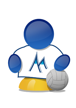 logo_metrovolley